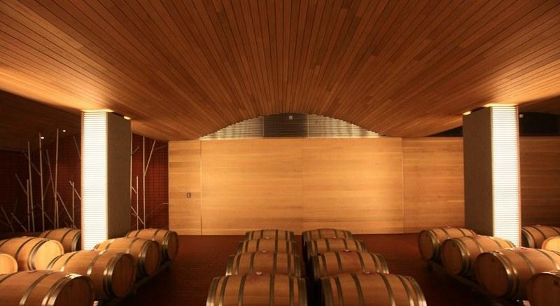 sala-barricas-wine-cellar-vega-sicilia (3)